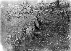 Cromlech du Puy de Pauliac - Partie inférieure
