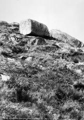 Menhir dit La Pierre-Fade - Vue d'ensemble