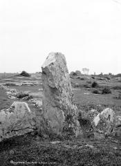 Deux menhirs à Tréfoux - Vue d'ensemble