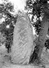 Menhir dit La Pierre Longue - Vue d'ensemble