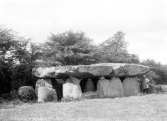 Dolmen dit de la Frébouchère - Ensemble sud