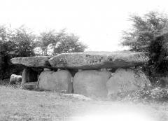 Dolmen dit de la Frébouchère - Ensemble sud-est
