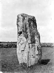Menhir de Kerluhir - Vue d'ensemble