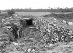 Alignement et dolmen de Kerlescan - Vue d'ensemble