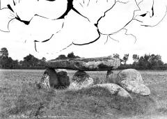 Dolmen de Passe-Bonneau - Vue d'ensemble