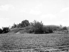Dolmen dans le tumulus dit La Motte-de-la-Garde - Vue d'ensemble du tumulus