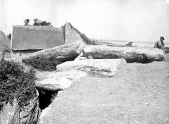 Tumulus avec dolmen du Mané-Nélud - Vue d'ensemble du côté de l'entrée