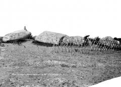 Grand menhir de Men-er-Grah - Vue d'ensemble