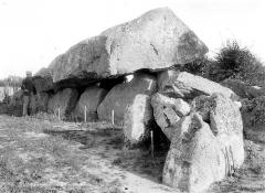 Dolmen dit La Pierre Folle - Allée couverte, côté nord
