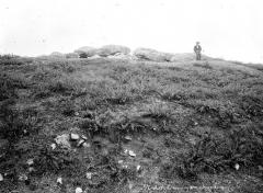 Trois dolmens dans le tumulus de Rondossec - Vue d'ensemble