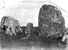 Vingt-sept menhirs dits de Sainte-Barbe - Vue d'ensemble