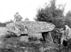 Dolmen dit des Gorces ou de Montgarneau - Vue d'ensemble