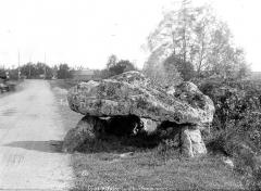 Dolmen de Langault - Vue d'ensemble