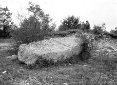Dolmen dit de la Boixe - Pierre de dolmen sous tombelle