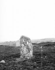 Alignement du Ménec - Menhir