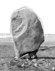 Alignement et dolmen de Kermario - Menhir