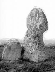 Alignement et dolmen de Kermario - Menhirs