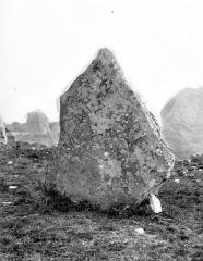 Alignement et dolmen de Kerlescan - Menhir