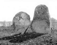 Alignement et dolmen de Kerlescan - Menhirs, du côté du grand carré