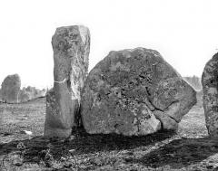 Alignement et dolmen de Kerlescan - Menhirs