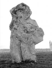 Alignements du Vieux-Moulin - Menhir