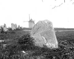 Alignements de Saint-Pierre - Vue d'ensemble à la tête des alignements, avec le moulin en arrière-plan