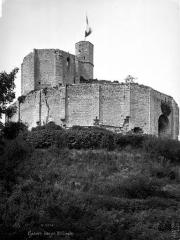 Restes du château - Ruines
