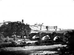 Cité de Carcassonnne - Vue générale prise de l'ouest