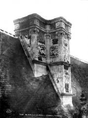 Château de Blois - Cheminée