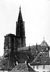 Cathédrale Notre-Dame - Ensemble sud-est : Flèche et toitures