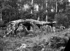 Dolmen de la Contrie du Rocher -