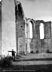 Ruines du château et de la collégiale des Roches-Tranchelion - Nef