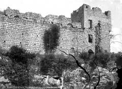 Ruines du château et de la collégiale des Roches-Tranchelion - Ruines