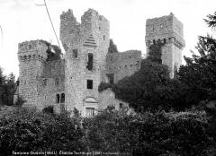 Château de la Tour du Pin (restes) -