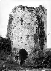 Château du Coudray-Salbart - Tour