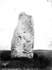 Menhir dit La Pierre du Diable - Vue générale