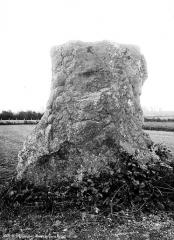 Deux menhirs dits Pierre Martine -