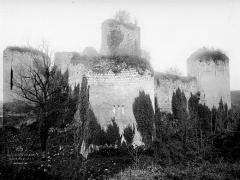 Château du Coudray-Salbart - Ensemble