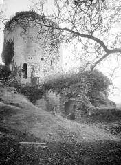 Château du Coudray-Salbart - Entrée du donjon