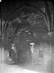 Château du Coudray-Salbart - Cheminée du donjon