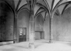 Ancien Palais des Comtes de Poitiers - Salle de la tour Maubergeon, cheminée