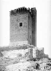 Ruines du château fort - Donjon