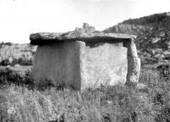 Dolmen de Fontanaccia - Vue d'ensemble