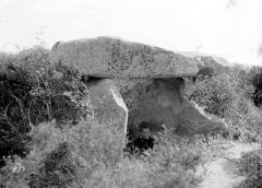 Menhir de Vaccil-Vecchio - Vue d'ensemble