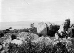 Menhir de Capo-di-Luogo - Vue d'ensemble