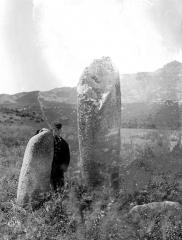 Deux menhirs du Rizzanèse - Vue d'ensemble