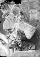 Cathédrale Notre-Dame - Gargouille