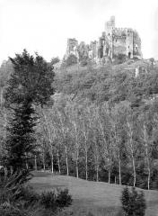 Ruines du château Chalusset - Vue générale