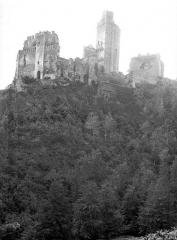Ruines du château Chalusset - Vue d'ensemble prise en contrebas de la colline