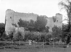 Ruines du château - Ensemble sud